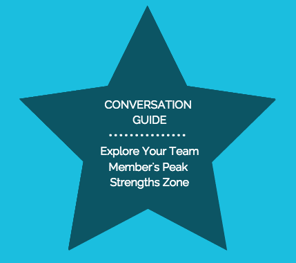 StrengthsFinder Conversation Guide - Explore Your Team Member's Peak Strengths Zone